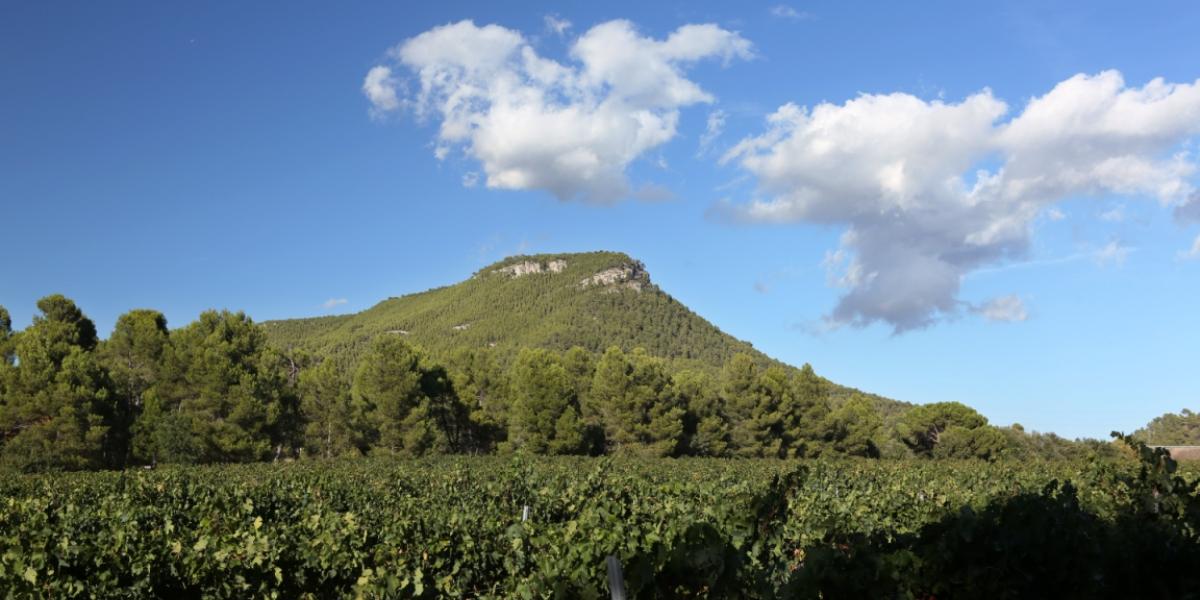 El Puig Aguilera, la tour de guet du bassin