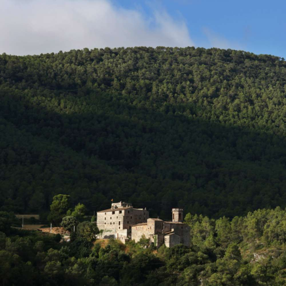 Castell d´Orpí