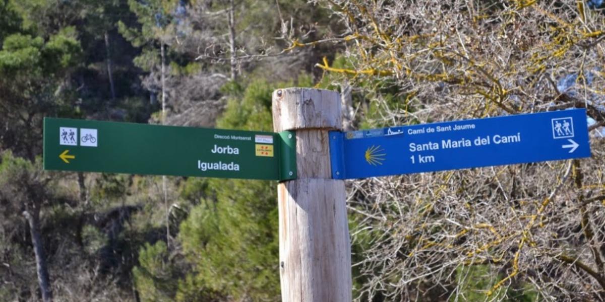 El Camí de Sant Jaume al seu pas per l'Anoia