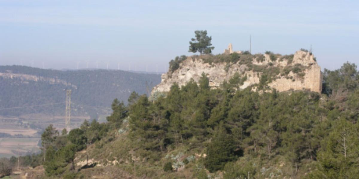 Castell de Castellolí