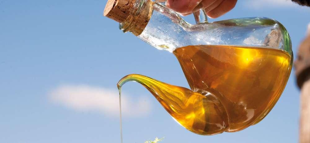 Molí d'oli Can Gibert, més de cent anys de tradició i qualitat
