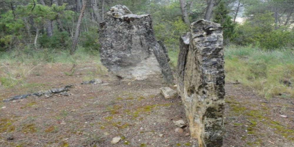 Sepulcre Megalític de Comallagosa.
